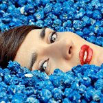Yelle : Nouvel album